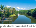 Aerial view of the calm lake in the forest 44449437