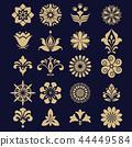 floral set. Spring or summer design for invitation 44449584