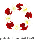 Red Rose and White Lily Flower Christmas Wreath 44449695