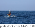 Fishermen and Traditional Fishing Boats  44450730