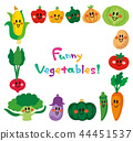 微笑的蔬菜框架 44451537