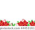 포인세티아의 배경 44453161