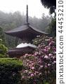 kongouzanmaiin, tahoto, two-storied pagoda 44453210