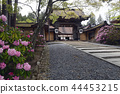 kongobu-ji temple, nave, main temple building 44453215
