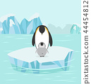Penguin and baby  in North pole Arctic 44454812