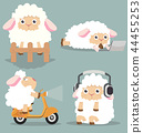 Cute  little sheep set 44455253