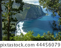 Waipio Valley Lookout,Big Island Hawaii 44456079
