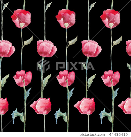 Poppies. Hand drawn Floral pattern 44456419
