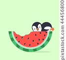 watermelon bite with penguin 44456800