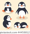 Cute little penguin vector set 44456812