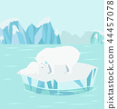 Polar bear with cub  at North pole Arctic 44457078