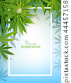 green cannabis leaf drug marijuana herb Background 44457158