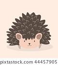 cute Hedgehog cartoon character 44457905