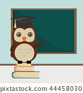 owl on book stack  at classroom 44458030