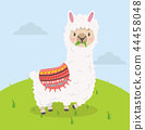 Cute alpaca eat grass cartoon 44458048