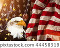 Bald Eagle with American flag 44458319