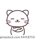 cat, pussy, animal 44458759