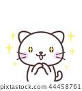 印象深刻的白色貓 44458761
