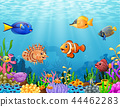 Vector illustration of Cartoon fish under the sea 44462283