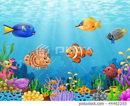 Vector illustration of Cartoon fish under the sea 44462283