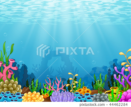 Underwater scene with tropical coral reef 44462284