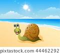 Cute snail cartoon at the beach 44462292