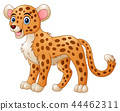 Vector illustration of Cute cheetah cartoon 44462311