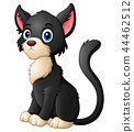 Cute cartoon black cat 44462512
