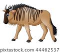 Cartoon wildebeest mascot 44462537