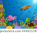 Cartoon tropical animal with beautiful underwater  44462538