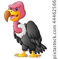 Vector illustration of Cute vulture cartoon 44462566