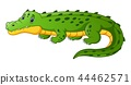 Vector illustration of Cartoon crocodile 44462571