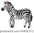 Vector illustration of Cute zebra cartoon 44462572
