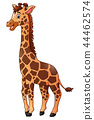 Vector illustration of Cute giraffe cartoon 44462574