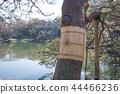 리쿠기엔, 육의원, 일본 정원 44466236