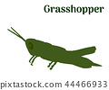 Green Locust profile on white, vector eps 10 44466933