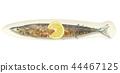 ฤดูใบไม้ร่วงปลาหวาน 44467125