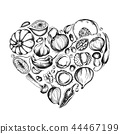 onion ingredient vegetable 44467199