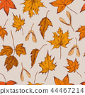 Vector seamless pattern of autumn pattern. Hand drawn vector illustration 44467214