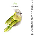 Yellow bird Watercolor Vector. Colorful painted 44468551