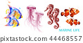 Watercolor colorful fish set collection Vector 44468557