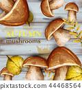 Mushrooms watercolor Vector card. Autumn fall 44468564