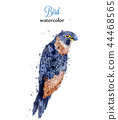 watercolor parrot exotic 44468565