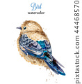 Watercolor bird Vector. Colorful painted style 44468570