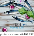 watercolor, fish, seafood 44468592