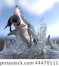 Great white shark with prey in its mouth jumping 44470111