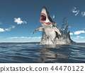 Great white shark leaping out of the water 44470122