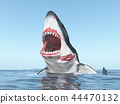 Great white shark leaping out of the water 44470132