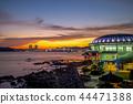 Night view of Dongbaekseom Island in Busan, Korea 44471388
