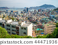 skyline of busan and harbor in south korea 44471936
